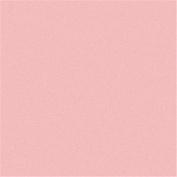 Rainbow Classic Felt 23cm x 30cm -Baby Pink 24 per pack