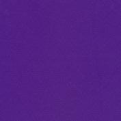 FM-60 Nylon-Spandex Tricot Matte Purple