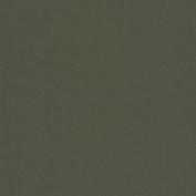 FM-60 Nylon-Spandex Tricot Matte Olive