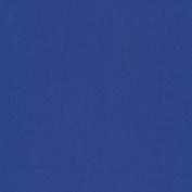 FM-60 Nylon-Spandex Tricot Matte True Blue