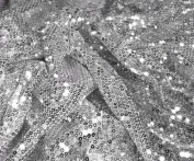 Silver Stretch Mesh W/silver Sequins Fabric 130cm Wide By the Yard
