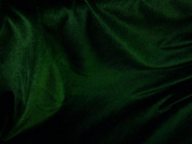 Stretch Velvet Hunter Green 150cm By the Yard