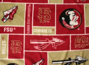 College Florida State University Seminoles 012 Fleece Fabric Print By the Yard