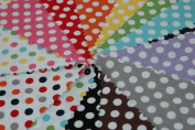 Cotton Small Dots 25cm Stacker By Riley Blake 10-350-14