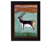Study of a Black Buck. Mughal India. Overall frame size 15cm x 20cm . Ideal for most gifting occassions.