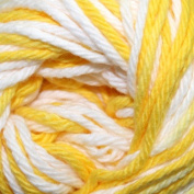 Lily Sugar 'n Cream Yarn Ombre (00165) Daisy Ombre By The Each