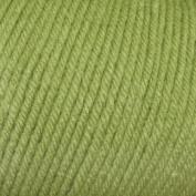 New Mary Maxim Ultra Mellowspun Yarn - Medium Green
