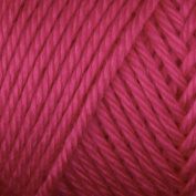 Caron Simply Soft Yarn 180ml Brites (9604) Watermelon By The Each