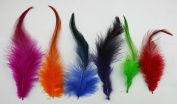 Chuzhao Wu Feathers Decorations 4-13cm