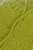 Cleckheaton Country 8 Ply 1885 Green