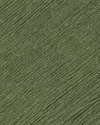 Elsebeth Lavold Silky Wool [Bay Leaf]