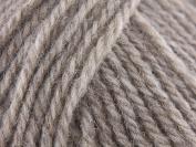 Patons wool blend aran - beige