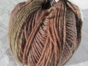 Knitting Fever Painted Sky Superwash Yarn Self Striping Colour 211 Tawny