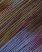 Malabrigo Merino Worsted Multi Yarn 621 Deja Vu