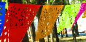 Mexican Papel Picado Banner, Mexican Party Decor, Fiesta Banners
