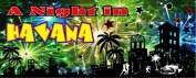A Night in Havana Party Banner 150cm x 60cm
