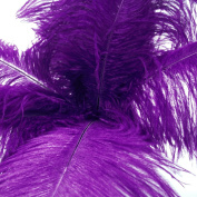 (Super Green Store) 20pcs Ostrich Feather Purple 30cm - 36cm Natural Feathers Wedding, Party ,Home ,Hairs Decoration