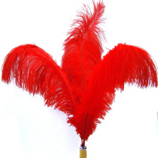 (Super Green Store) 20pcs Ostrich Feather Red 30cm - 36cm Natural Feathers Wedding, Party ,Home ,Hairs Decoration