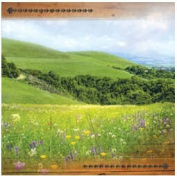 Paper House Productions - Texas Collection - 12 x 12 Paper - 12 x 12 Paper - Hill Country