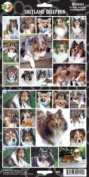 Pet Qwerks S40 Shetland Sheepdog Dog Sticker