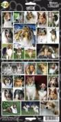 Pet Qwerks S15 Collie Dog Sticker