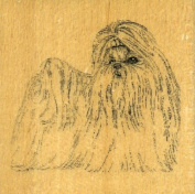SHIH TZU Dog Rubber Stamp - Wood Handle Mounted by Stamp Gallery