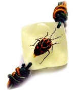 Harlequin Bug Bracelet - Brown and Black Spotted Bug in a Faceted Jewel Shaped White Background