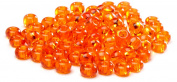 Beaders Paradise LT6E77 Czech Glass Transparent Orange 6/0 E-Beads in a Tube