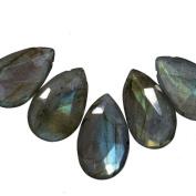 Labradorite Briolette Facet Beads A+ Blue Green Gold Flash 14mm-17mm Qty=10