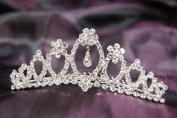 Beautiful Princess Bridal Wedding Tiara Crown with Crystal Leaf C16209