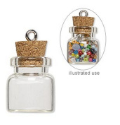 20 Mini Glass Bottles 3/4 inch (20x19mm) Message Treasure Charm Pendant Kit Makes 20 Bottle Pendants