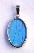 Blue Morpho Butterfly Wing Small Oval Pendant