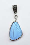 Blue Morpho Butterfly Wing Small Wing-Shaped Pendant