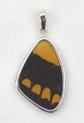 American Swallowtail Butterfly Wing Medium Pendant