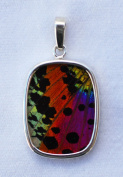 Sunset Moth Butterfly Wing Medium Rectangular Pendant