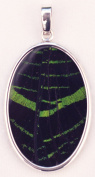 Green-Banded Leilus Butterfly Wing Large Oval Pendant