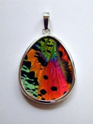 Sunset Moth Butterfly Wing Large Pear-Shaped Pendant