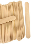 1000 Wood Jumbo Craft Sticks Natural Colour