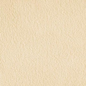 WinterFleece Velour Ivory Fabric