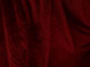 Stretch Velvet Dark Red 150cm By the Yard