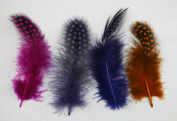 Chuzhao Wu Spotted Feathers Decorations 3-10cm