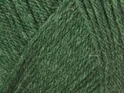 Ella Rae Classic Wool Yarn #336 Forest 100g