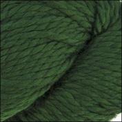 Cascade Yarns - Cascade 128 Superwash - ARMY GREEN #801
