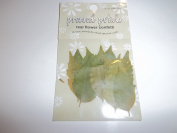 Scrapbook Embellishment Real Leaf