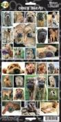 Pet Qwerks S13 Chinese Shar-Pei Dog Sticker