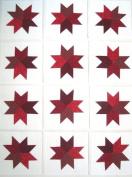 12 Applique Red Star Quilt Blocks 17cm Squares