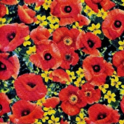 Wizard of Oz POPPY FIELD 100% Cotton Fabric (Great for QUILTING, SEWING, CRAFT PROJECTS, THROW PILLOWS & More) 2 Yards x 110cm Wide