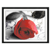 Red Rose 3D Stamped Cross Stitch Kit - 48cm By 37cm
