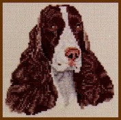 Pegasus Originals English Springer Spaniel Counted Cross Stitch Kit