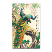 Rich Peacock 3D Stamped Cross Stitch Kit - 60cm By 90cm